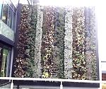 living-wall-1
